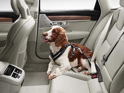 Hundsele Volvo original